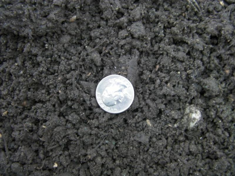 Sandy 3 way Topsoil with quarter to show approx size of material. Size will vary