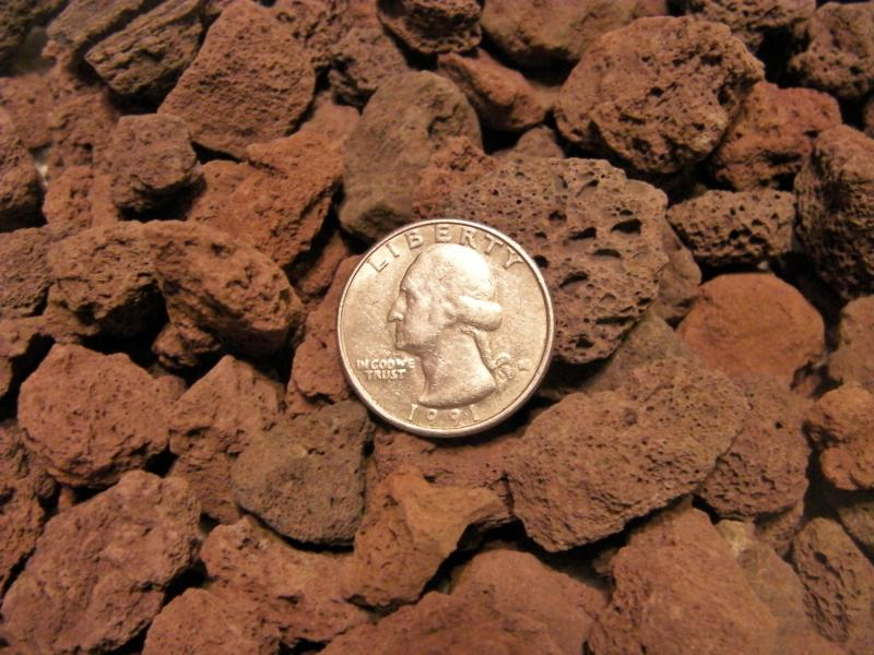 3/4 inch Red Lava.  Quarter to help show size of rock.
